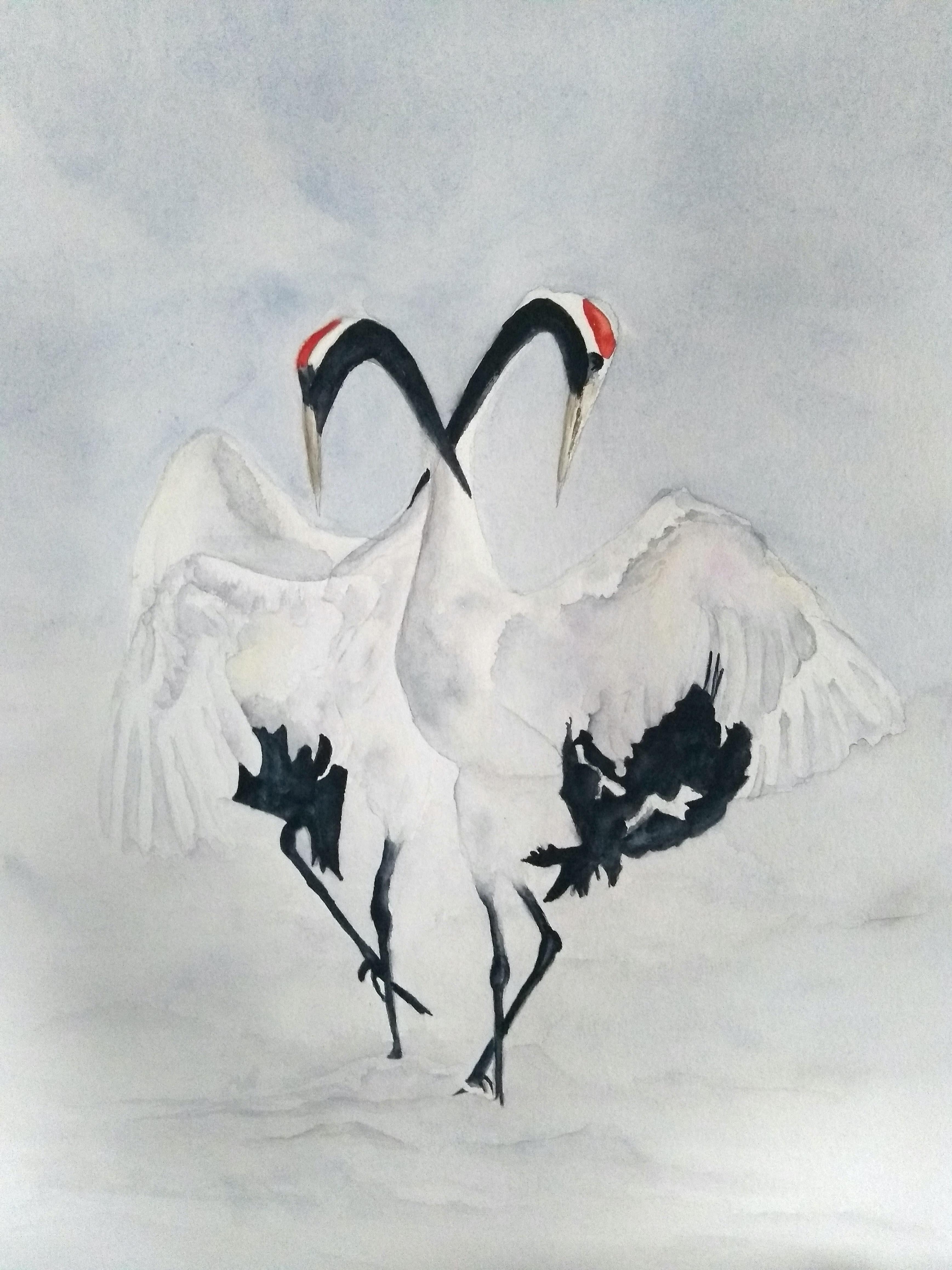 Kraanvogels in sneeuw